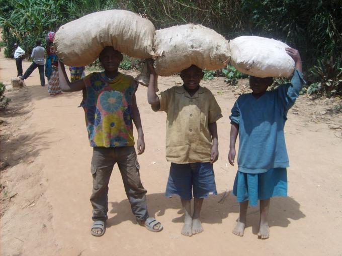 Children working in tea plantations before Save the Children intervention